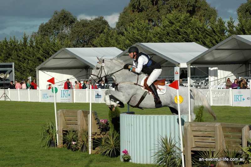 Pluto heading over the last fence to t ake the lead at the Melbourne International CCI*** 3DE. Pictures kindly supplied b y an eventful life.