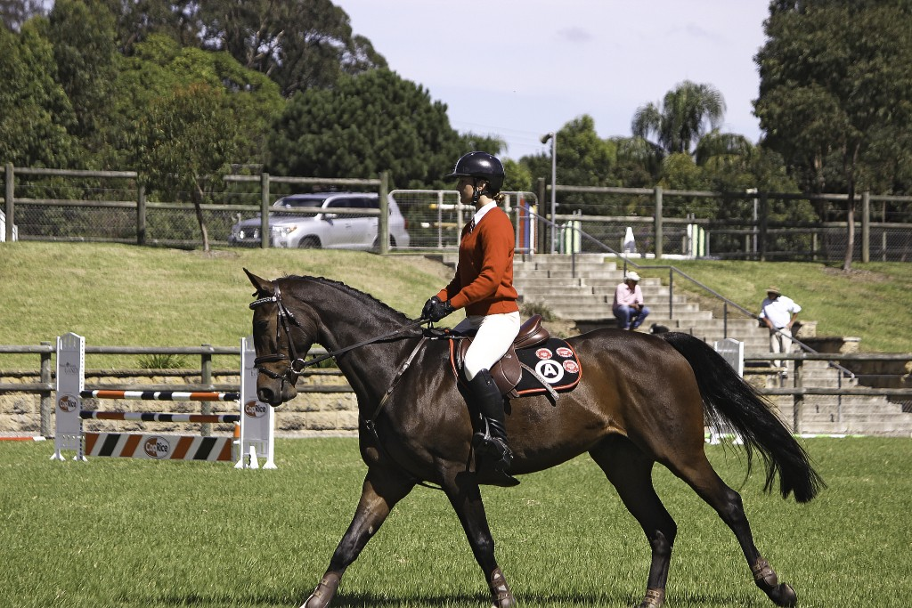 Combined Zone 23 Clubs equitation day, held at The Arcadia Pony Club grounds. Aooroximately 100 particitants over two Areas